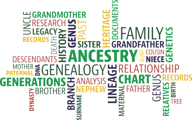 Per Hour Family Tree Research